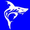 Toni Shark